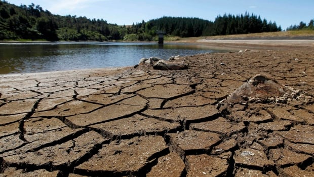 FILE - This Feb. 26, 2013 file photo shows dry cracked land near a water reservoir in Kiwitahi, New Zealand. (AP Photo/New Zealand Herald, Christine Cornege, File)