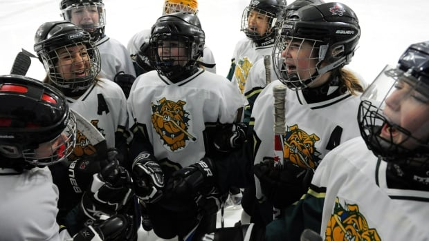 High school students play hockey in Ottawa. The Conservative government is doubling the tax credit for expenses on children's fitness, in time for parents to file their taxes next spring.