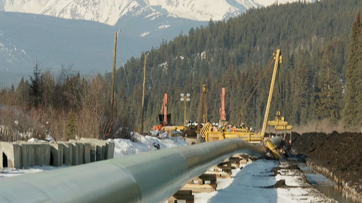 Kinder Morgan Pipeline Burnaby To Appeal Neb Decision