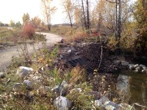 Beaver storm pond