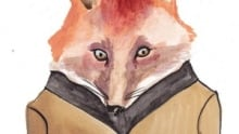 fox300
