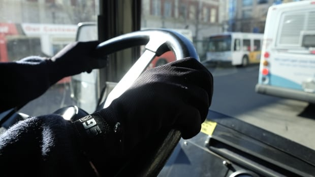Mass transit buses transportation commuters Saskatoon drivers steering gloves