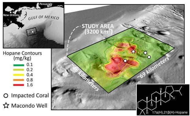 Hydrocarbon contamination Deepwater Horizon seafloor