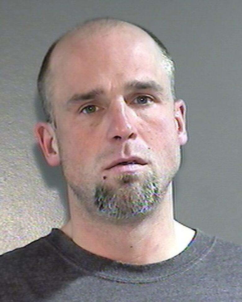 James Henry Reddeman facing sex assault charges in Surrey, B.C.