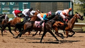 Racetrack Gambling Colorado