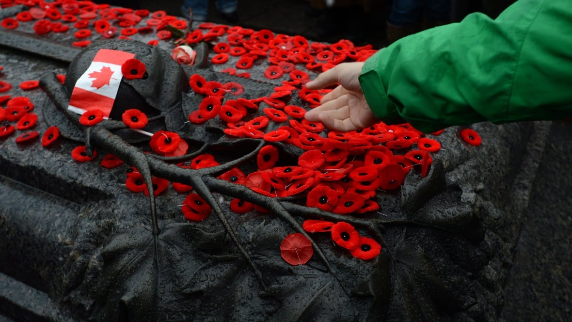 Remembrance Day 2017 What S Open And Closed In Ottawa