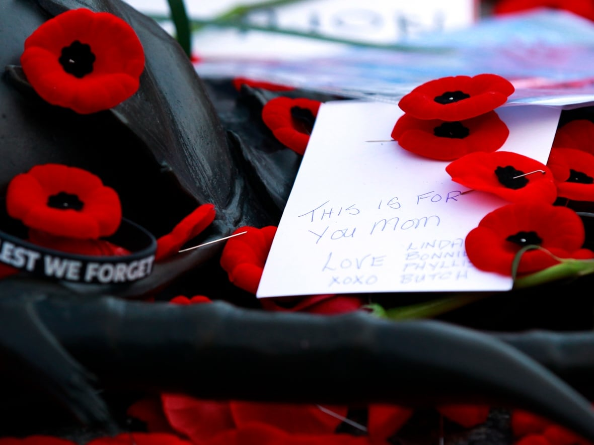 Remembrance Day Poppies Around The World Cbc