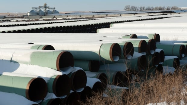 TransCanada says it expects B.C. to decide soon on two pipelines for natural gas.