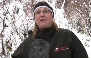 Jocelyn Davis Scaredy Cat Rescue