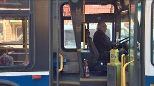 Fredericton Transit bus driver