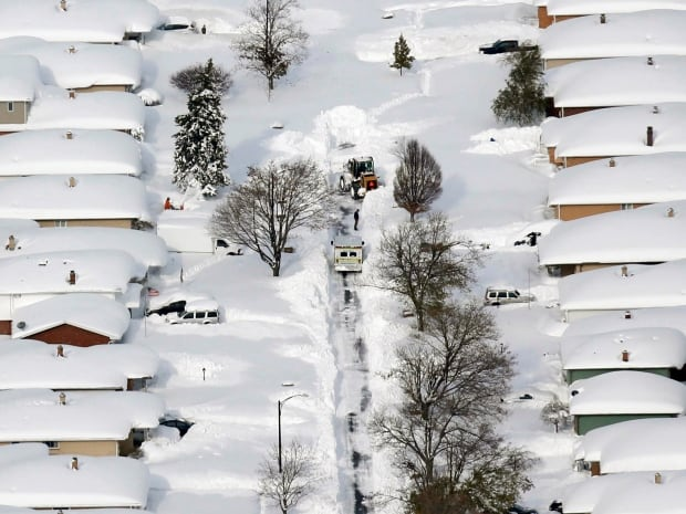 Bulldozer clears a path