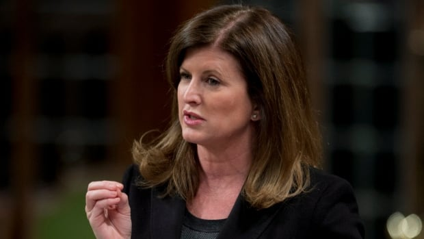 Health Minister Rona Ambrose has stayed away from the public discussion over the abortion pill therapy RU-486, and re-emphasized Thursday that new drug approvals go through Health Canada, not the minister.