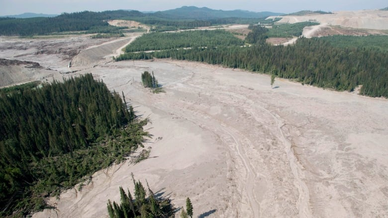 Mount Polley collapse 1-year anniversary: Mines Minister says