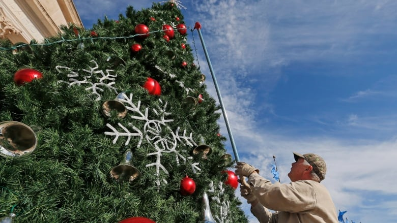 Christmas Tree Water.5 Things To Know About Picking Fresh Christmas Trees Cbc News