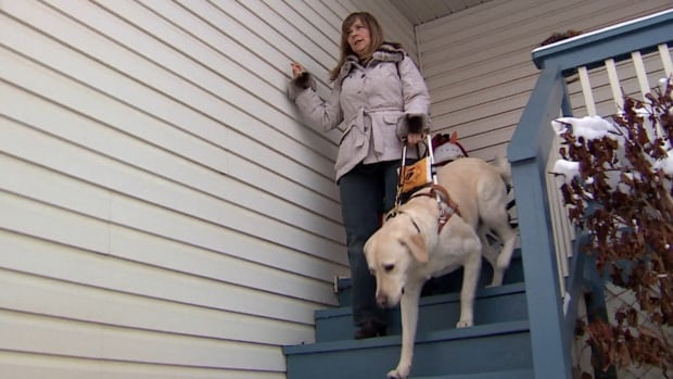 Diane Allard, who gets around with help from her guide dog Zircon, has been refused service by many establishments.
