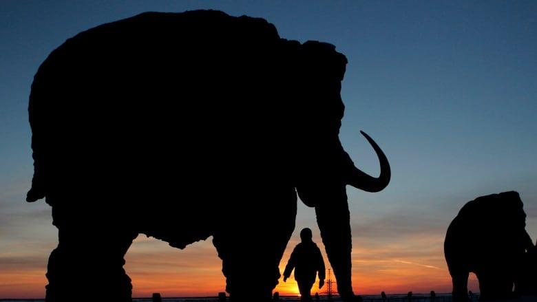 7cbec33ebc1 A child walks near a mammoth sculpture in Khanty-Mansiysk