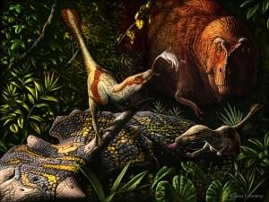 Acheroraptor illustration