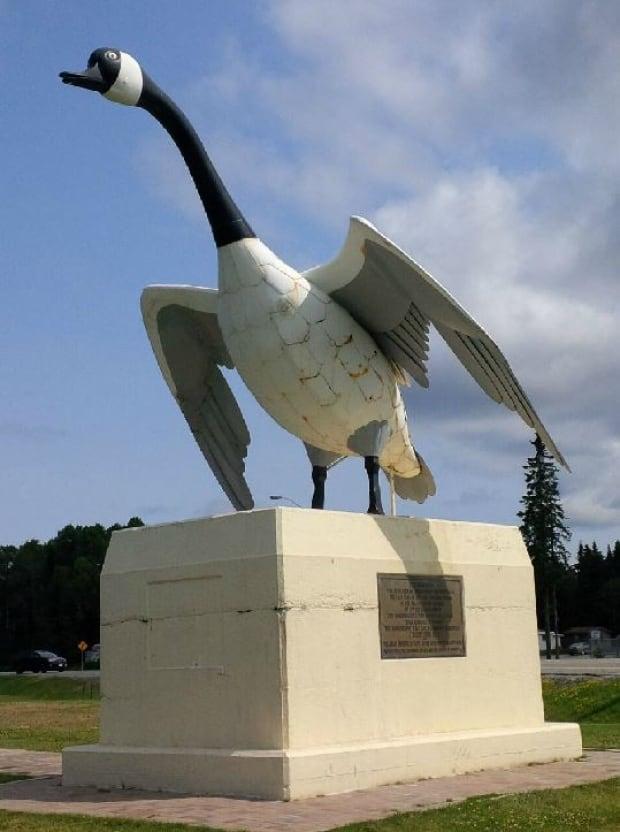 Wawa Canada Goose