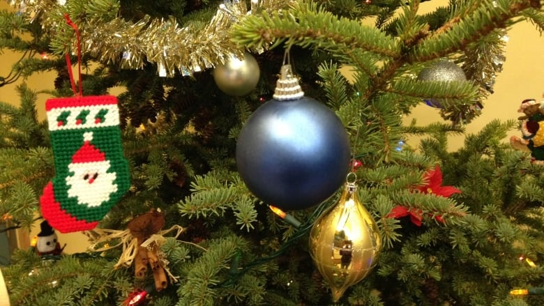 Christmas Tree Lots.Live Christmas Trees In The Lower Mainland Buyers Guide