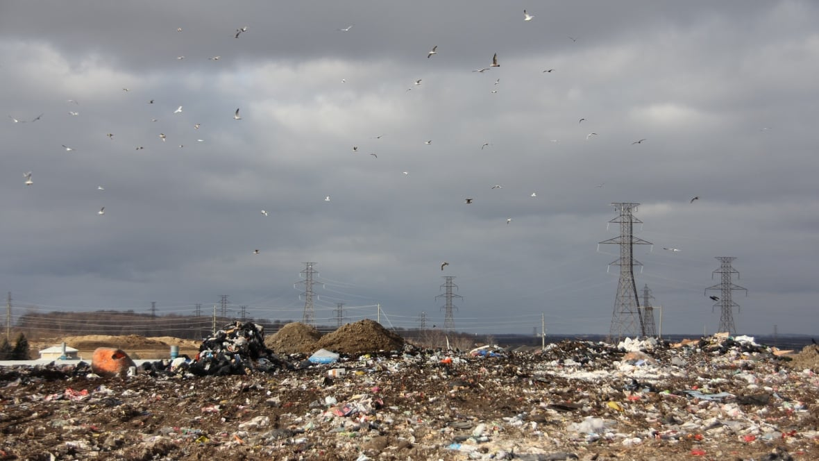 Hamilton Should Put Solar Panels On Its Closed Landfills
