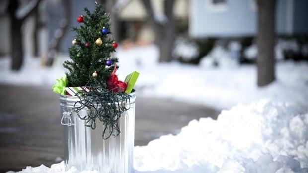 Christmas Tree Collection Trowbridge : Montreal christmas tree collection underway