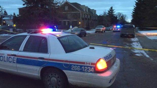 A total of seven people were shot, one fatally, after violence erupted at a New Year's party in Calgary.