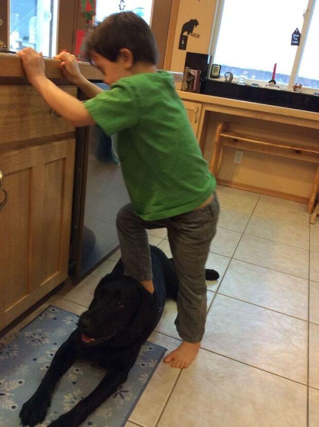 Sarah Palin Facebook Trig dog standing