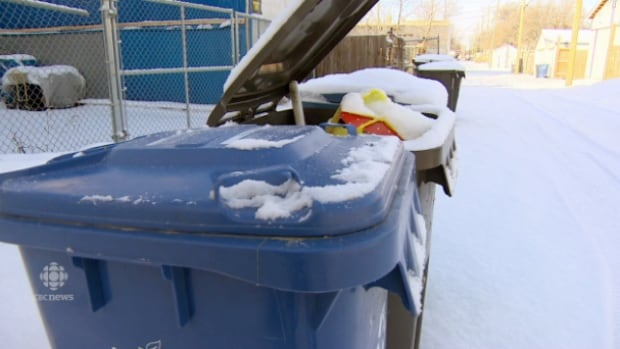 On Friday, a City of Winnipeg committee will review policy recommendations that would make the city responsible for replacing homeowners' recycling or garbage bins damaged by a third party.