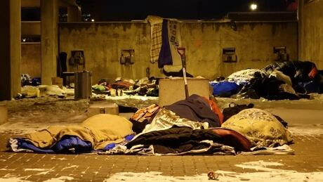 an analysis on the growing concern of homeless people This deficit of affordable housing has led to high rent burdens, overcrowding, and substandard housing, which has not only forced many people to become homeless but has also put a growing number of people at risk of becoming homeless.