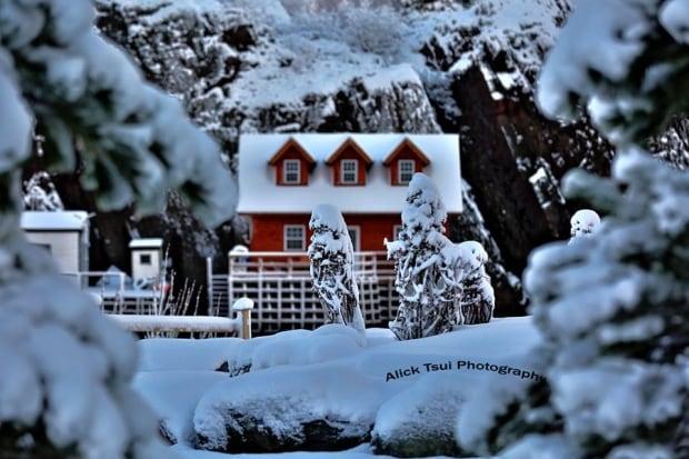 Quidi Vidi house by Alick Tsui