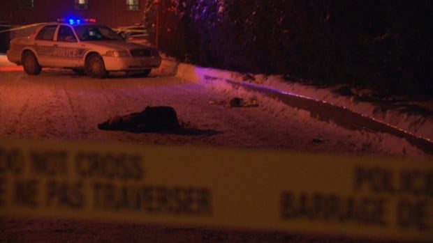 One man was shot twice in the back in Ottawa's Ritchie area in the city's first shooting of 2015.