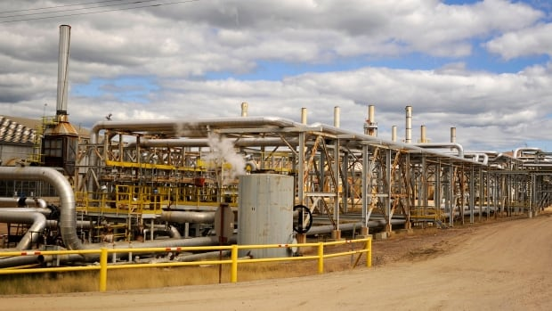 Excessive steaming was a factor in the leaks at Canadian Natural Resources Limited's Primrose oilsands project in 2013, the AER says.