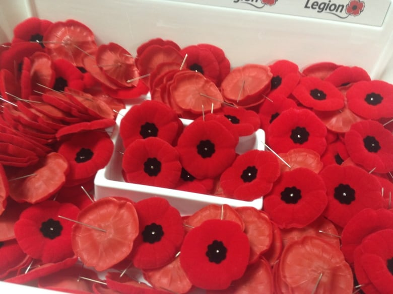 What does the poppy mean to you cbc news a veteran of the korean war who lives in moncton will narrate historical vignettes performed by the capital theatres school of performing arts as part of mightylinksfo