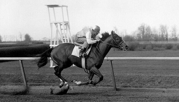 ND-ramon-Cerda-1964-620