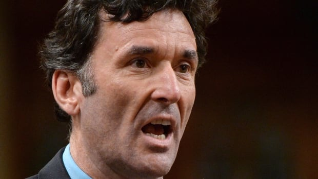 NDP Foreign Affairs Critic Paul Dewar asks a question during question period in the House of Commons on Parliament Hill in Ottawa on Thursday, Oct. 9, 2014.