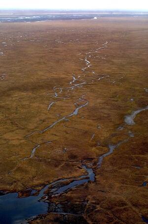 Obama Alaska Wilderness
