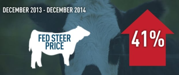Alberta fed steer price