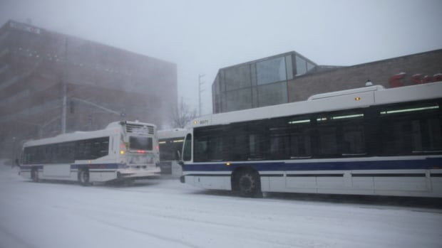 Fredericton Transit pulled its buses off the roads