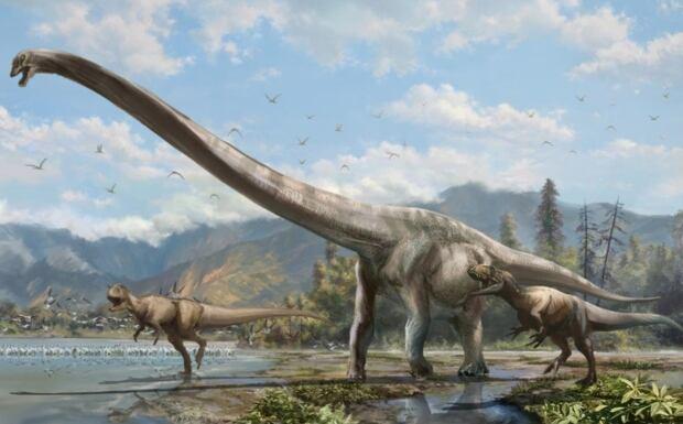 Alta Dragon Dinosaur 20150128