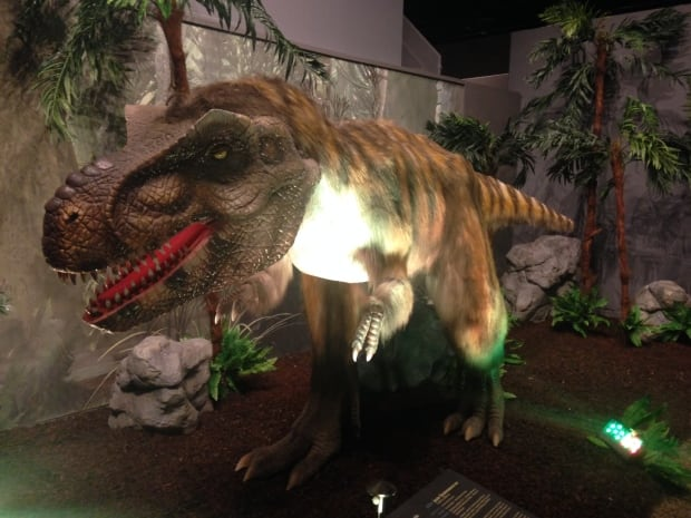 Dinosaurs Unearthed comes to Halifax