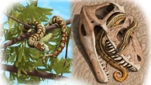 Ancient Snakes