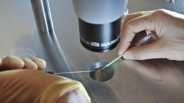 A scientist works during an IVF process. British lawmakers voted Tuesday to allow scientists to create babies from the DNA of three people.