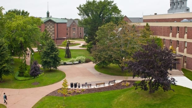 A CBC News investigation found Mount Allison University has the second highest rate of sexual assault reports in Canada over a five-year period.