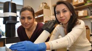 SFU creates beating heart cells