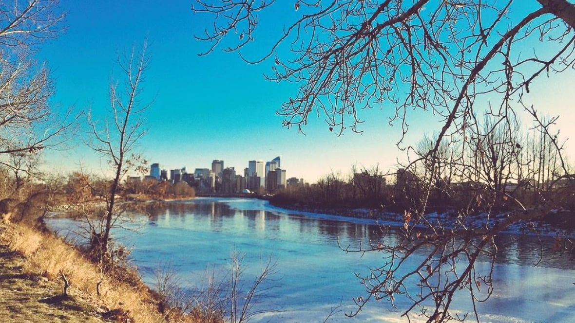 how to start a supply business in calgary alberta