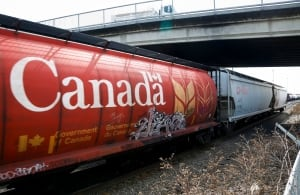 CP Rail grain hopper cars 20140501