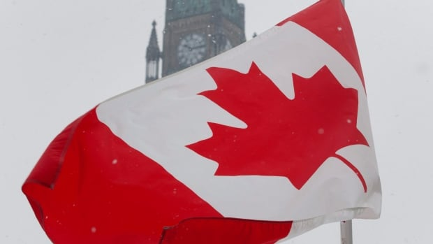 The Maple Leaf flag has succeeded in large part because its unique iconography arrived just as Canada was coming into its own as a country.
