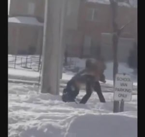 Brampton teen assault
