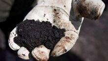 Raw bitumen