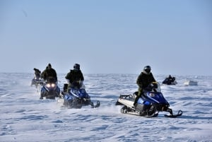 Exercise Arctic Bison 2015